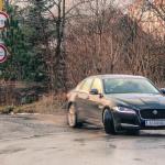 jaguar XF exterior (30)