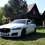 jaguar XF exterior  (1)