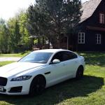jaguar XF exterior  (3)