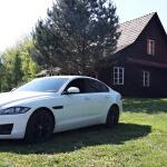 jaguar XF exterior  (4)