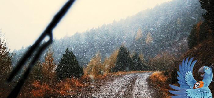 podzimni-silnice
